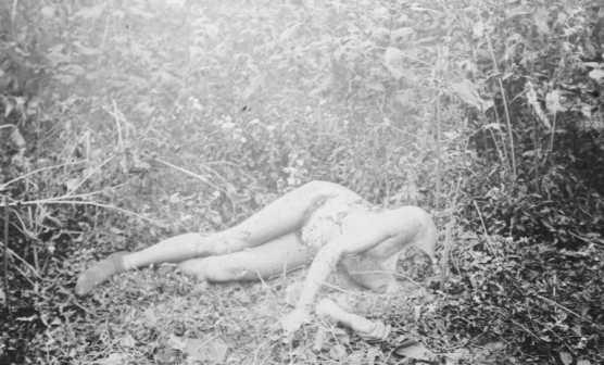 073-Andrassy-Body-768x465
